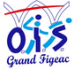 logo Office Intercommunal du Sport